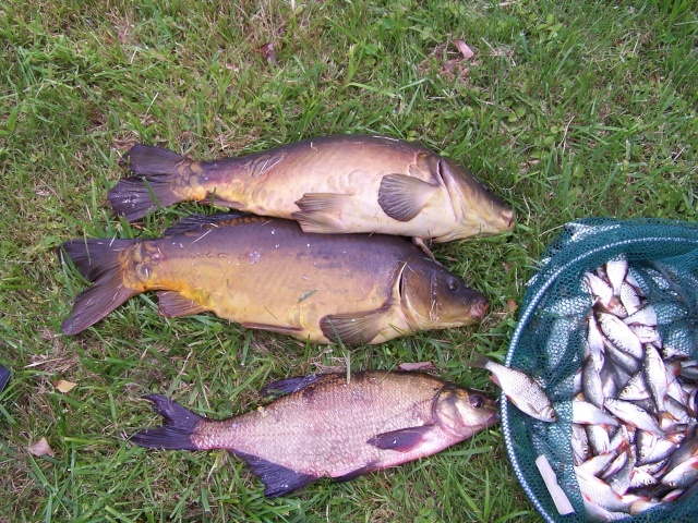 La pêche de Krasnodar des réservoirs deau