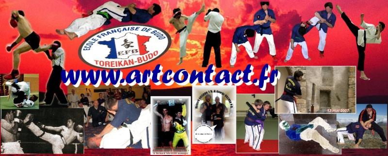 Art contact