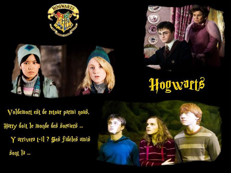 ● Hogwarts ●