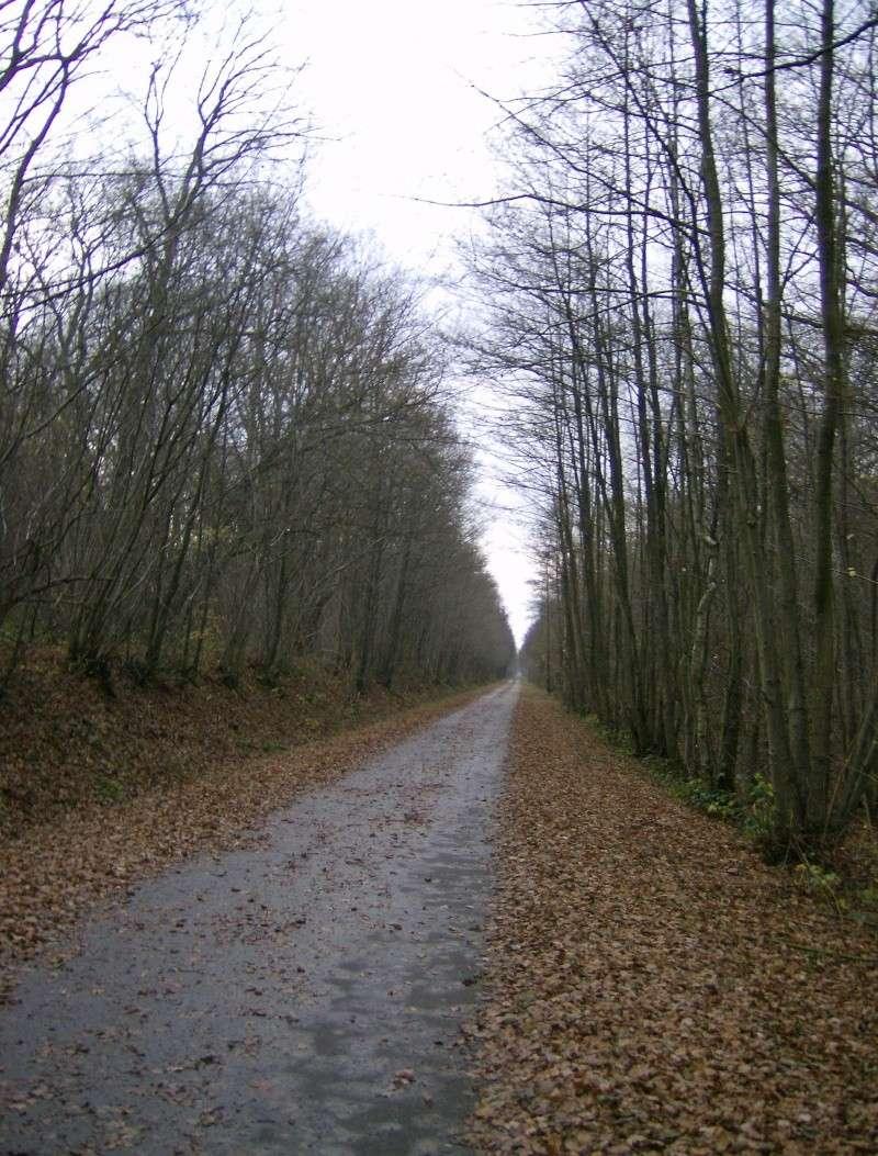 2006-143.jpg