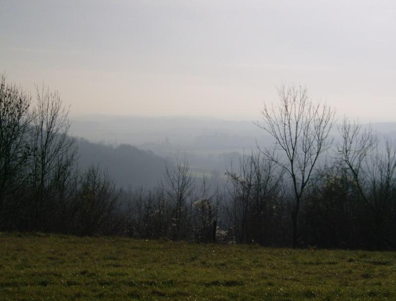 2006-153.jpg