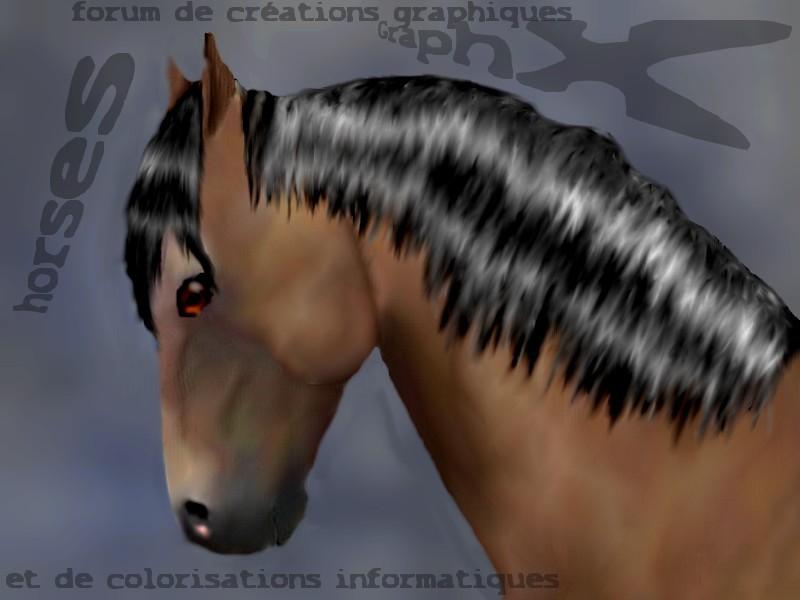 GraphX Horses