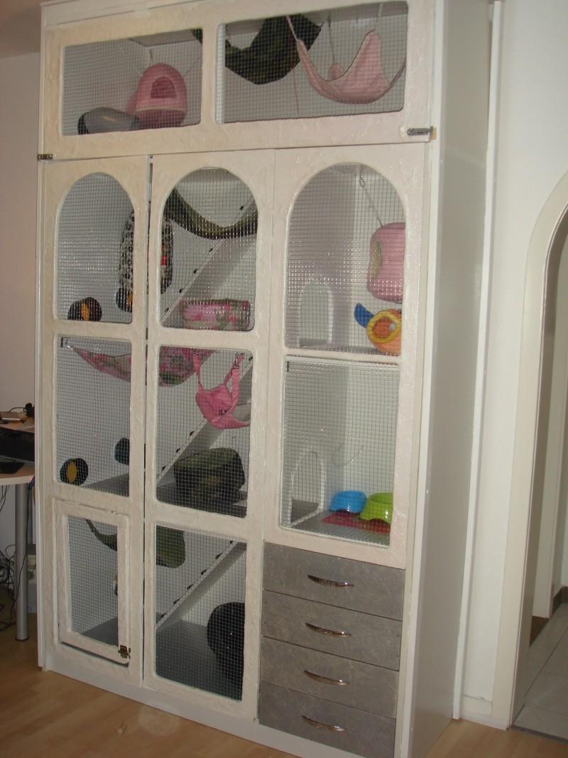 Ma future cage for Accessoire furet fait maison