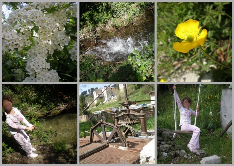 http://i20.servimg.com/u/f20/11/70/33/11/photos20.jpg