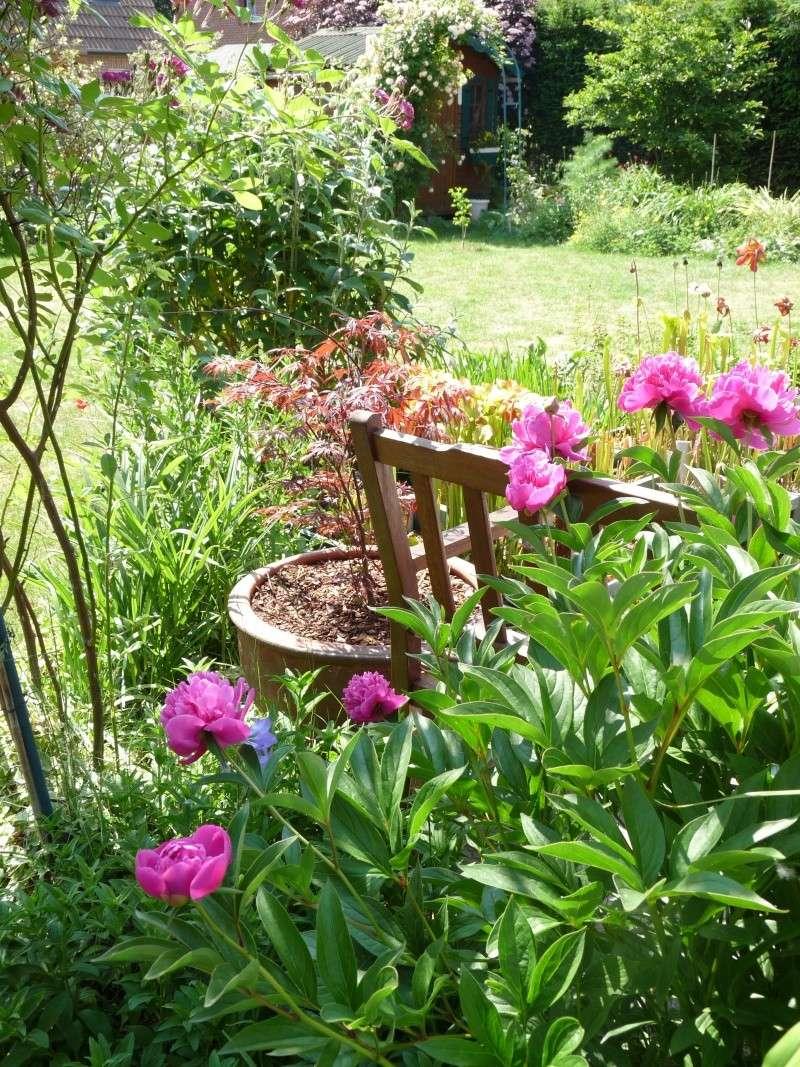 Petits bouts de jardin for Jardin synonyme