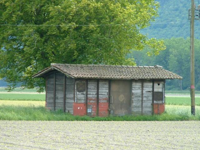 Forum afficher le sujet la cabane au fond du jardin - La cabane au fond du jardin ...