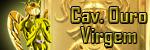 Cavaleiro de Ouro de Virgem NV 200