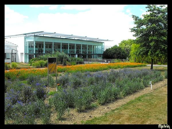 Melvin d photographies archives du blog jardin for Jardin yves rocher