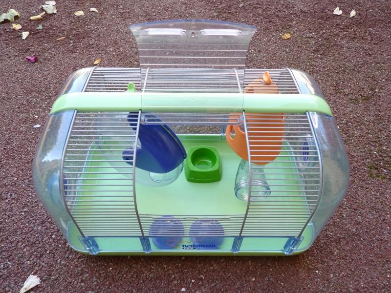 a vendre cage pour cochon d 39 inde et cage pour souris hamster. Black Bedroom Furniture Sets. Home Design Ideas