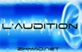 audition et les risques auditifs