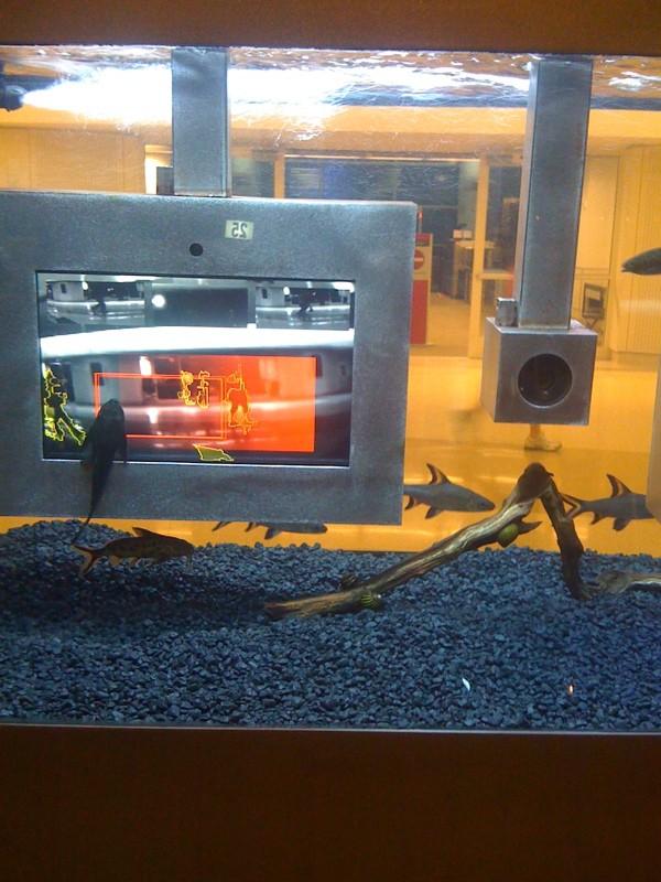 San Jose Airport Aquarium