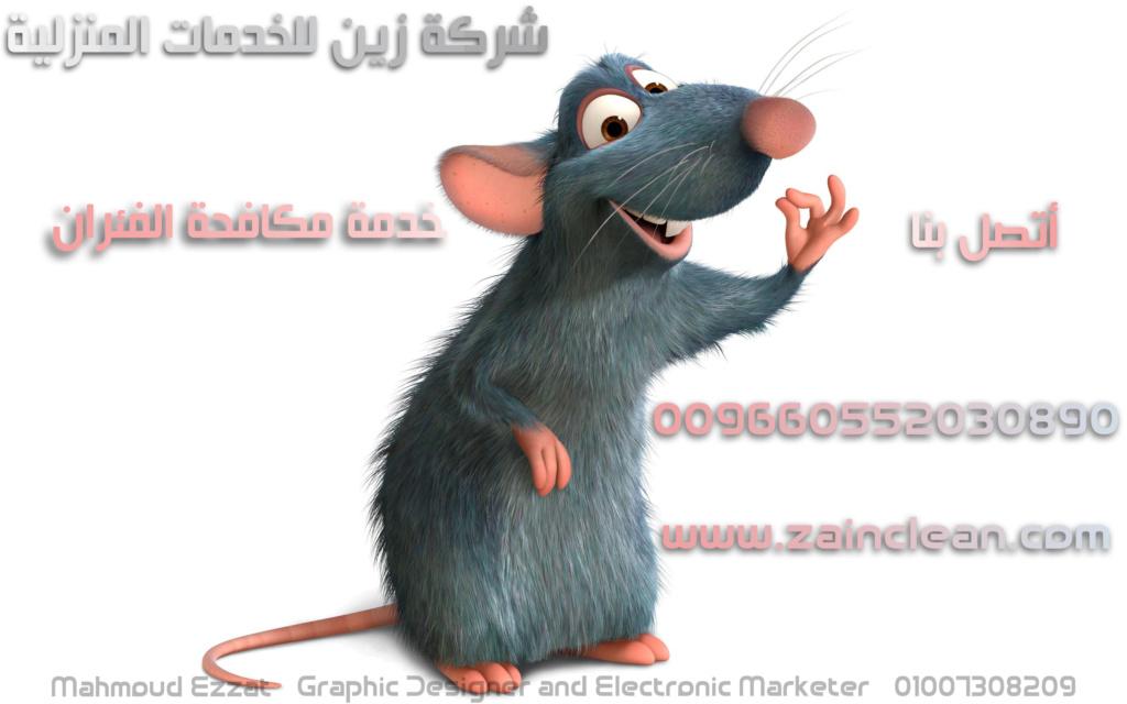 لمكافحة الفئران بالرياض